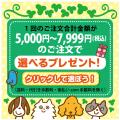 5000円で選べるプレゼント