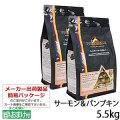 ピナクル サーモン&パンプキン 5.5kg×2個+乳酸菌おやつ1個