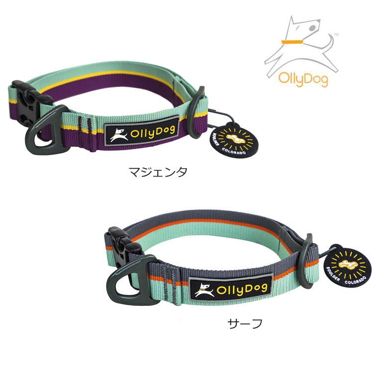 OllyDog・オリードッグフラッグスタッフカラー・犬 首輪 S.M.Lサイズ