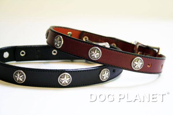 犬の首輪 WoofWear 【テキサススター サイズ14 幅1.9cm】