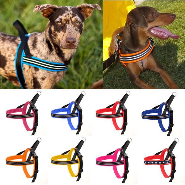 犬のハーネス【コンフォートフレックス スポーツハーネス・Comfortflex Sports Harness】サイズ:P《小型・超小型犬》