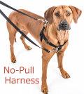 犬のハーネス【引っ張り防止ノンプルハーネス&専用リードセット】サイズ:XL《大型〜超大型犬》
