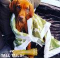 TALLTAILS 犬用ブランケット