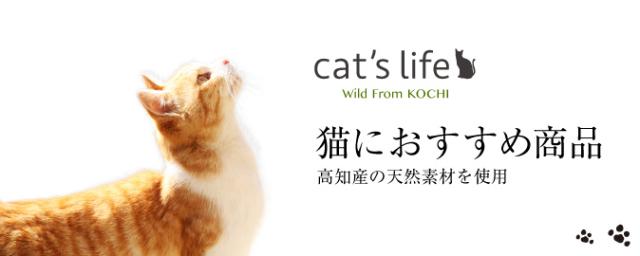 猫におすすめ商品