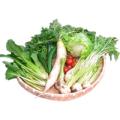 どれみふぁーむ 季節のサラダ野菜セット 2,000円分【送料無料】