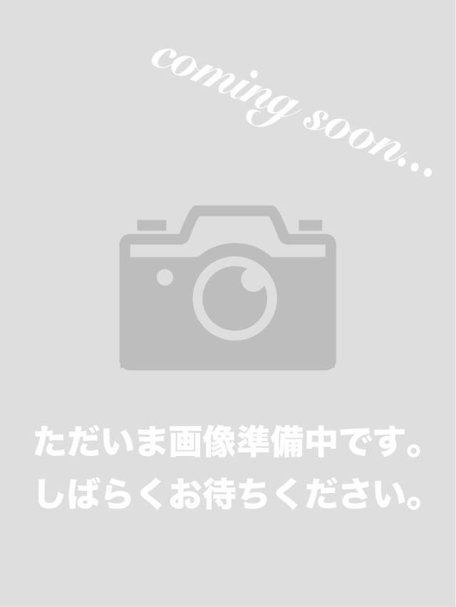綿ドライカノコ カラフル刺繍カットソー