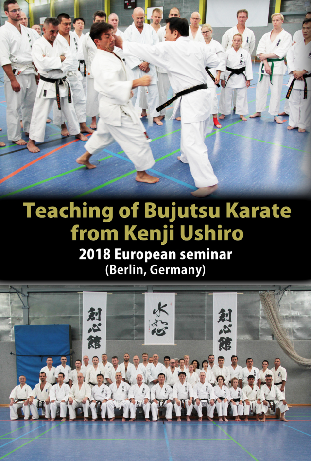 Teaching of Bujutsu Karate from Kenji Ushiro