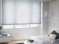 【ロールスクリーン】スタンダードな無地のロールカーテン【クール・カラー】≪4色≫