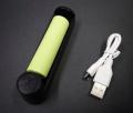 UVライト 充電器&バッテリー