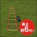 トレーニング ラダー