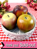 1950年代:愛らしい3個のりんごたち♪ロマンチックな英国ビンテージのバスケット