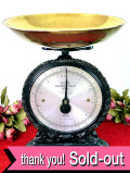 <超レア♪ SALTER(ソルター)>1910年代:コレクターズアイテムのソルターの貴重なキッチンスケール
