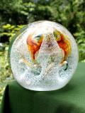 <スコットランド>「Caithness」♪氷の中のお花のようなケイトネスのとても大きなペーパーウェイト