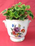 <ROYAL WINTON>華やかなお花たち♪左右に持ち手が付いた優雅なフォルムの鉢カバー