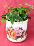<英国ビンテージ>英国の華やかなのお花たち♪ロマンチックで明るい鉢カバー