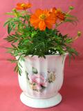 <英国ビンテージ>ピンクと黄色のお花たち♪ブラシタッチのお花が美しい大きな鉢カバー