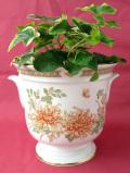 <St Michael>美しいボタニカルアート♪クリサンセマムのロマンティックな鉢カバー