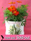 <英国ビンテージ>英国の優しい野の花♪優しいフォルムの足付の大きめの鉢カバー