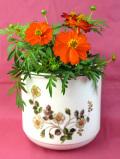 <英国ビンテージ>白い野バラ♪ずっしりと重たいアイアンストーンの大きな鉢カバー
