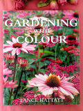<英国ガーデニングBOOK>「GARDENING WITH COLOUR」♪植物たちの色使いにこだわった大判でぶ厚いご本