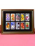 1930年代:とても貴重な「WILLS'S社」のシガレット・カードのイングリッシュガーデンのお花たちの額「10枚のお花たち」