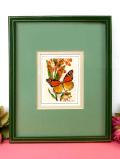 <英国シルク刺繍>英国の蝶々と珍しい美しいお花♪英国ビンテージのシルク刺しゅうの額