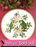 <Spode>「GARDEN BIRDS:No3」♪英国の愛らしい森の小鳥さんたちの絵画のような大きな絵皿「プレートハンガー付」