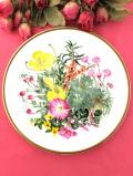 <Spink:限定品>「WILDFLOWERS:CLIFF & SEASHORE」♪たっぷりとした金彩と華やかなワイルドフラワーのお花の大きな絵皿「スタンド付」