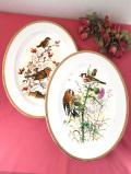 <Argyle>2羽の野鳥さん♪全長34cm英国の森の野の花たちのとても大きな楕円形の絵皿「プレートハンガー付き」
