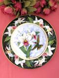 <Royal Doulton:限定品>「The White Bellied Woodstars Hummingbird」♪白いオーキッドと愛らしいハミングバードの金彩もゴージャスな絵皿「スタンド付」