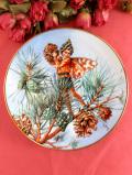 <フラワーフェアリー:限定品>「The Pine Tree Fairy」♪優雅な松の木の妖精の飾り皿