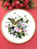 <Edwardian>「Goldfinch with Convolvulus」色鮮やかな野鳥さん♪西洋ヒルガオのお花とゴシキヒワの美しい絵皿