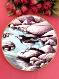 <RSPB:英国王立鳥類保護協会:WEDGWOOD>「Pied Wagtail」(セグロセキレイ)川の中流域に住む日本でもよく見かける森の野鳥さん♪絵画のような美しくて大きな絵皿「壁掛けハンガー付」