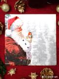<英国流クリスマス>大判:一辺33cm、10枚入り♪サンタさんとクリスマスロビンの分厚いペーパーナプキン