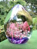 <英国ハンドメイド>宇宙に咲くお花のよう♪素晴らしい気泡たちの透明ガラスがきれいなペーパーウェイト