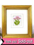 <英国ビンテージ>英国のヘレニウムのお花♪英国カントリーサイドのシルク刺しゅうの額
