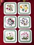 <PORTMERION>ボタニカルアートのお花たち♪上品な植物たちのコースター「6枚セット:お箱付」