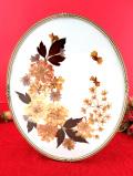 <英国ビンテージ>イングリッシュガーデンのお花たち♪蝶々も愛らしい天然花の押し花の額