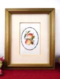 <英国ボタニカルアート>ロマンチックな桃♪繊細なタッチの果実の額