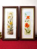 <英国ビンテージ>英国の愛らしいお花たち♪ロマンチックな水彩画の額