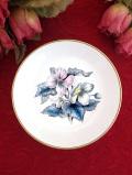 <ロイヤルウースター>愛らしいクリスマスローズ♪繊細で優しい色調のお花たちの小皿「スタンド付」