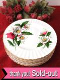 <ロイヤル・インペリアル>華やかな英国のクリスマスローズのケーキ皿「6枚セット」