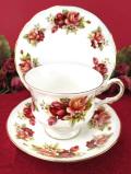 <クィーン・アン>咲き誇る赤とサーモンピンクのバラたち♪優雅な金彩が美しいトリオ