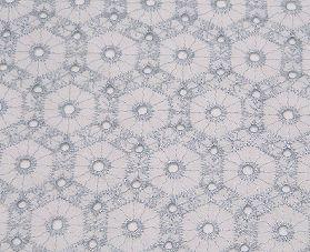 スペイン生地・刺繍綿レースA-24