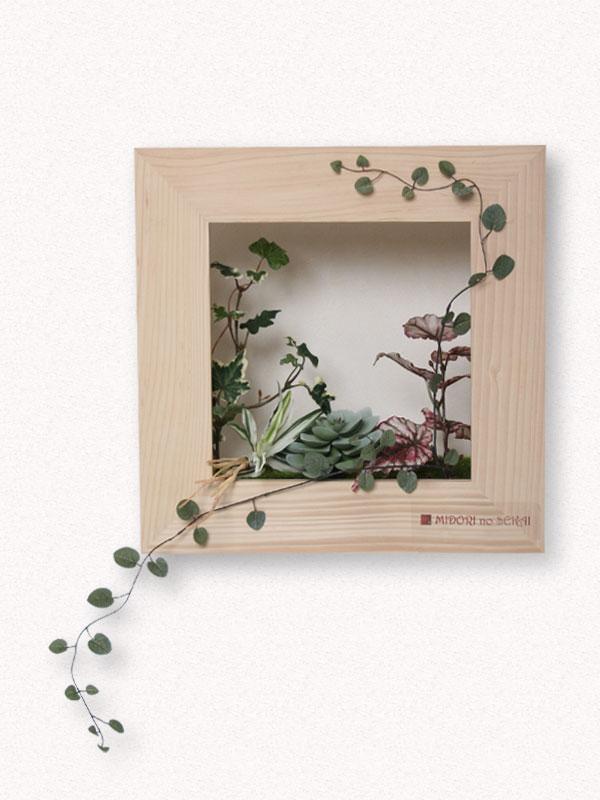 plants frame MIDORI no SEKAI[アーティフィシャル]