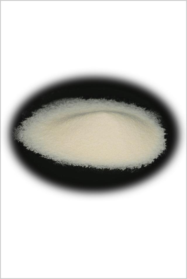 コンドロイチン粉末 70g【活発な毎日を強力にサポート】