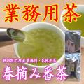 【静岡牧之原産】【一番茶】 【業務用お買い得茶】春摘み番茶500g