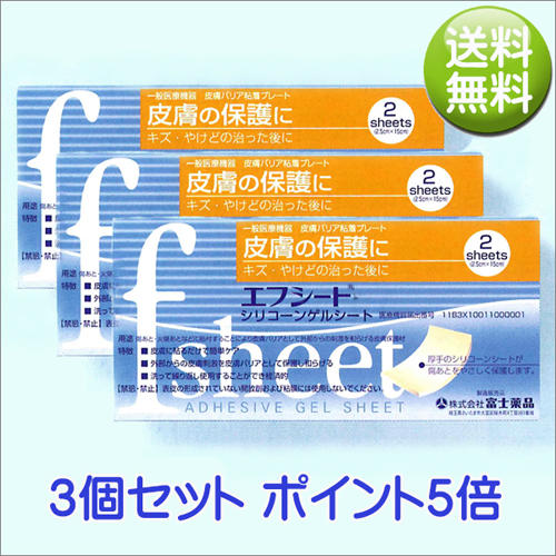 送料無料 エフシート 2.5cm×15cm 2シート入り(富士薬品)【3個セット】