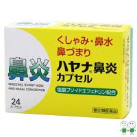 【指定第2類医薬品】ハヤナ鼻炎カプセル (24カプセル)※数量※選択肢※ 鼻水 鼻づまり