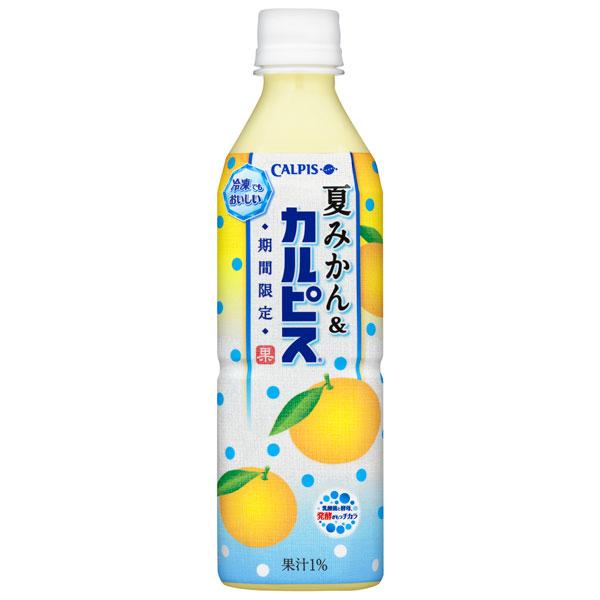 カルピス 夏みかん&カルピス 500ml×24本入り (1ケース) 【クレジット決済のみ】(KT)